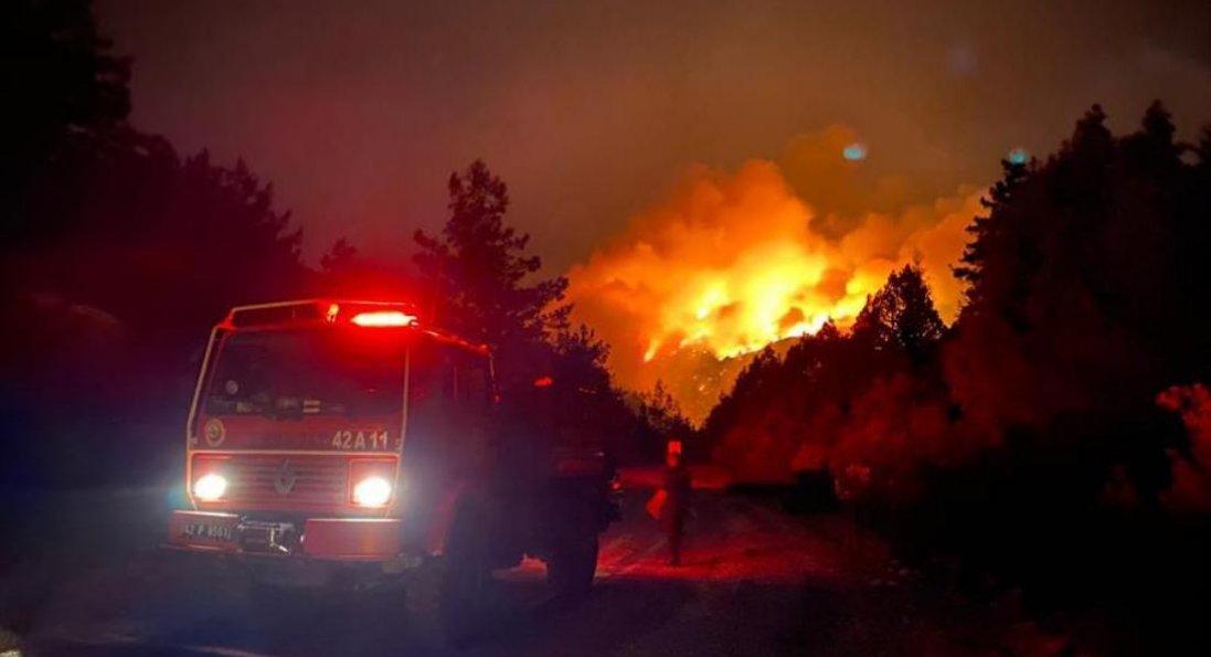 Лісові пожежі в Туреччині: кількість жертв зросла