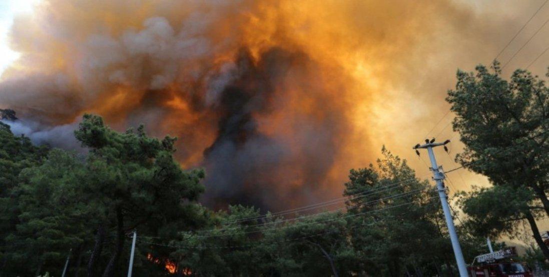 В Туреччині продовжують вирувати жахливі лісові пожежі: усі подробиці