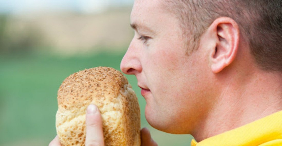 Чому не можна їсти хліб із цвіллю: спростування популярної помилки
