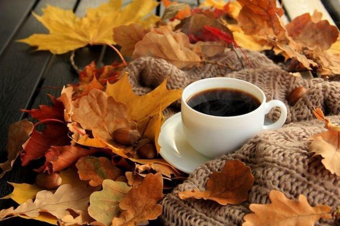 Народний синоптик дав прогноз погоди на осінь