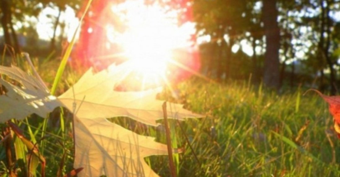 Спекотно та без опадів: погода в Україні 12 вересня 2021