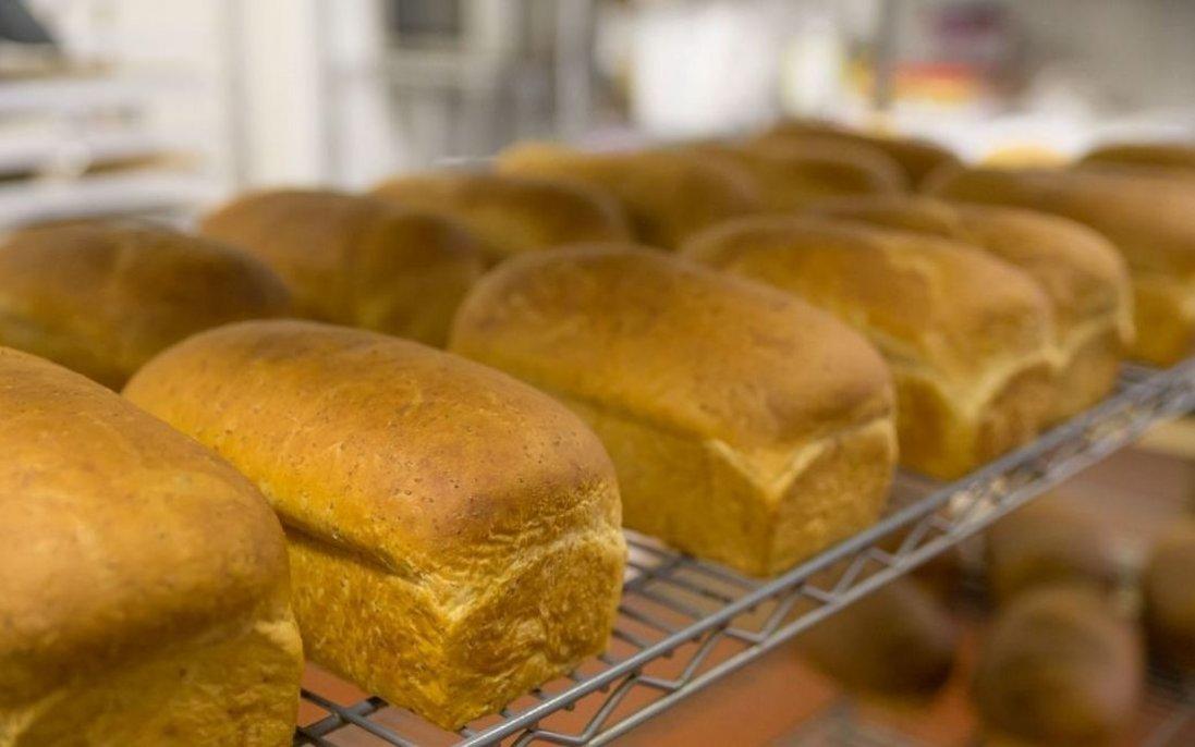 Рекордний врожай та обіцянки бізнесменів: що буде з цінами на хліб, олію та цукор