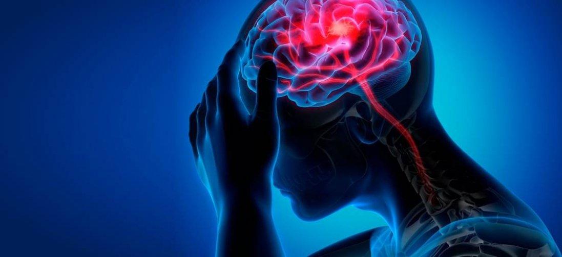 Які продукти шкодять мозку: несподівані висновки вчених