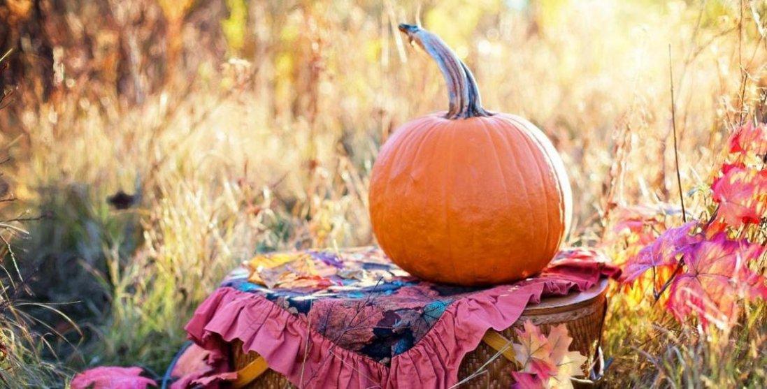 В Україні  у  жовтні 2021 «довгі вихідні»: скільки днів відпочиватимемо