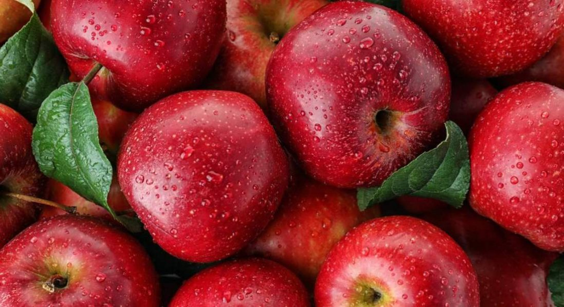 Чому яблука гниють іще на дереві